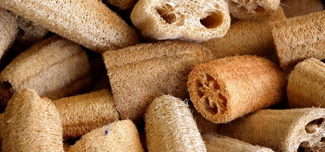 limnos sponge company loofahs